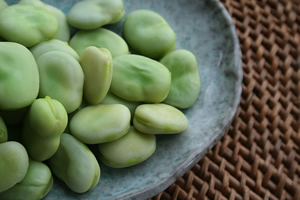 Cooked Fava Beans: a spring treat