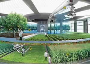 Concept: Vertical Farm