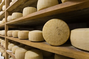 The Simplicity of Cheese